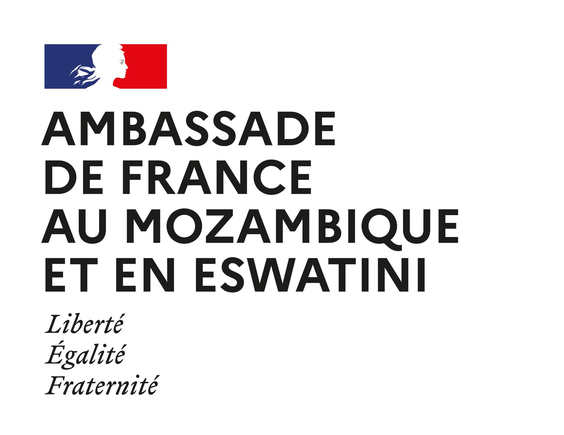 Logo Amb Mozambique Eswatini