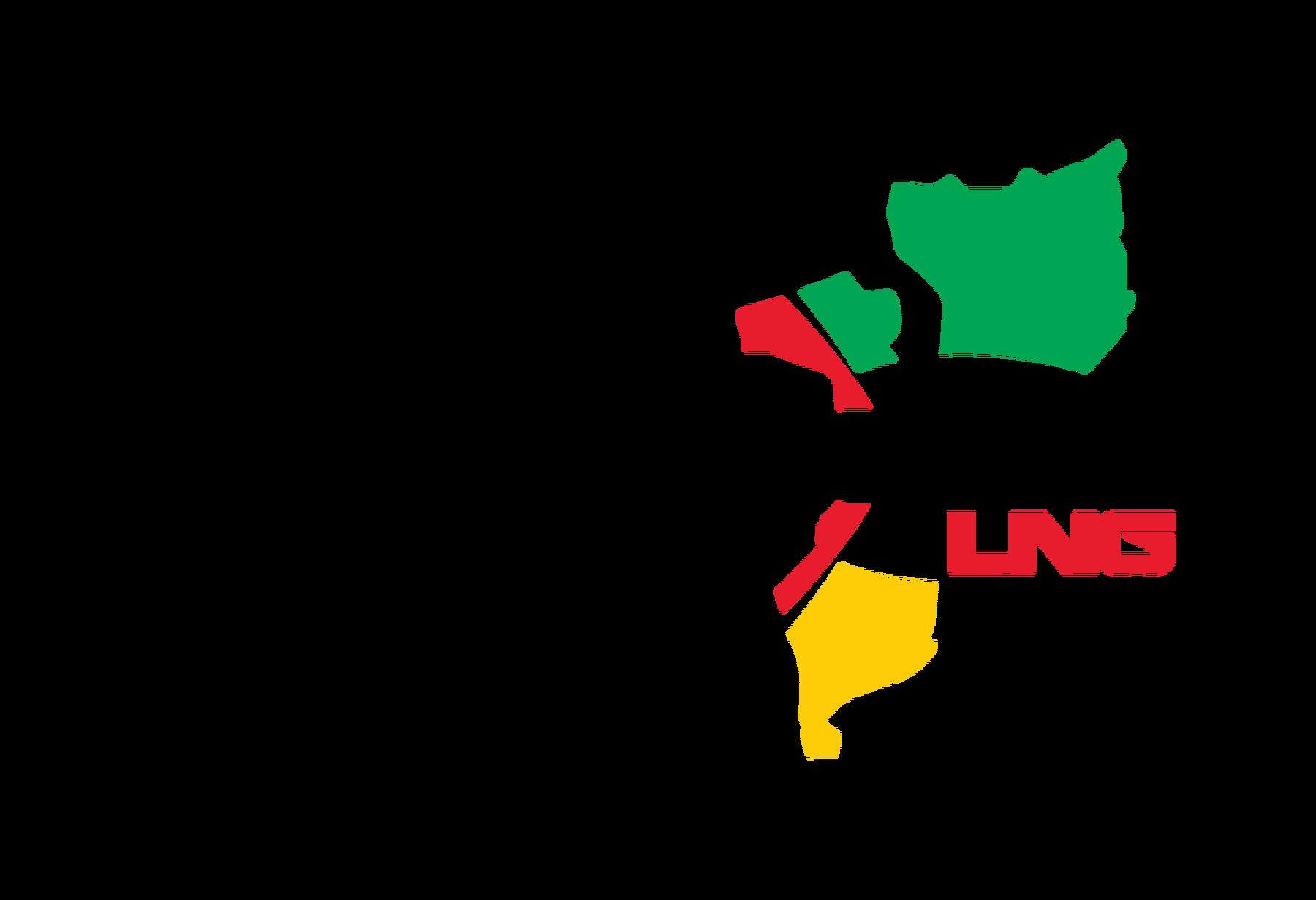 MOZ LNG logo